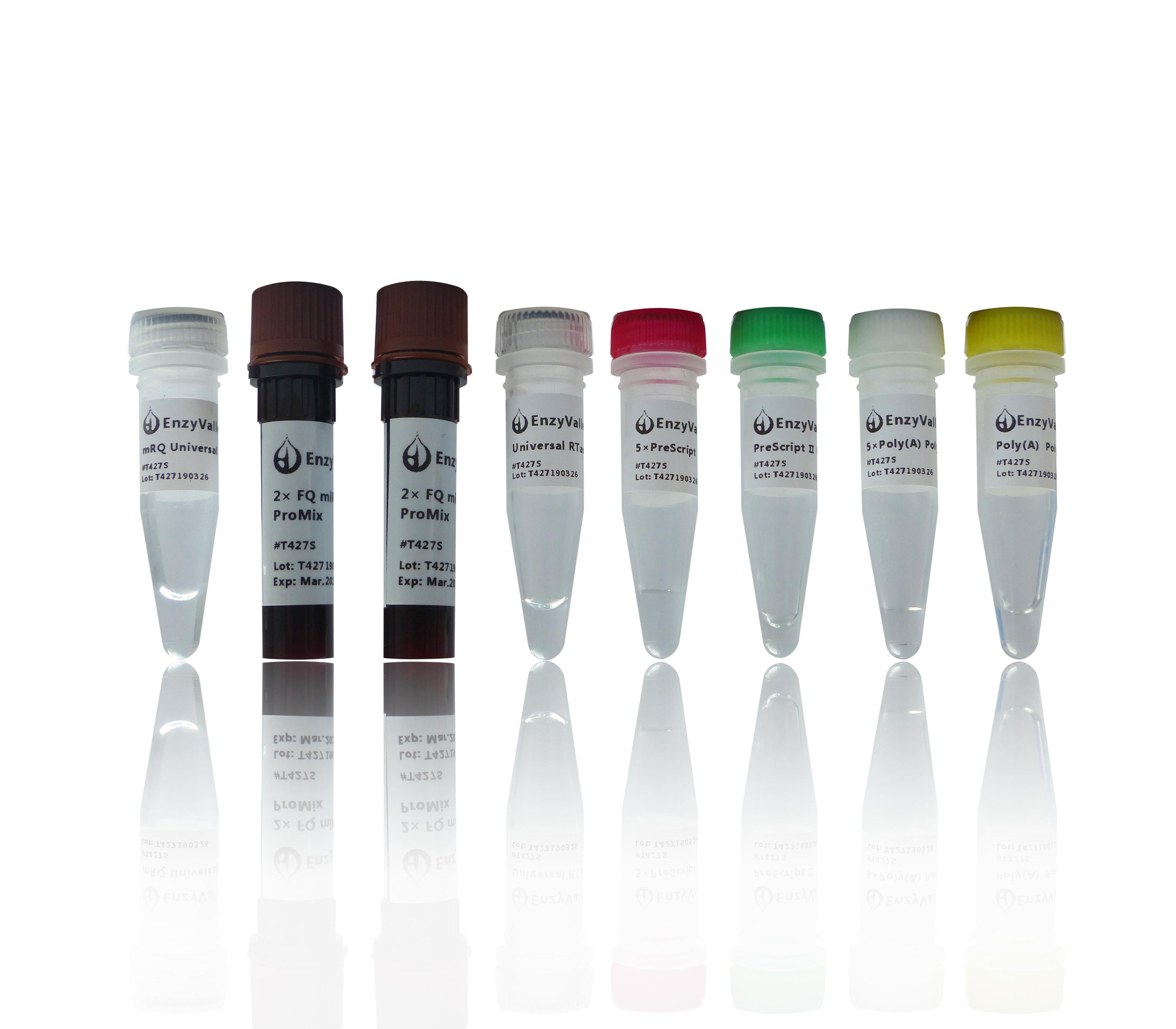 加尾法miRNA RT-qPCR试剂盒:FQTM miRNA Poly(A) qRT-PCR SYBR Kit
