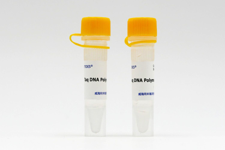 Taq DNA聚合酶