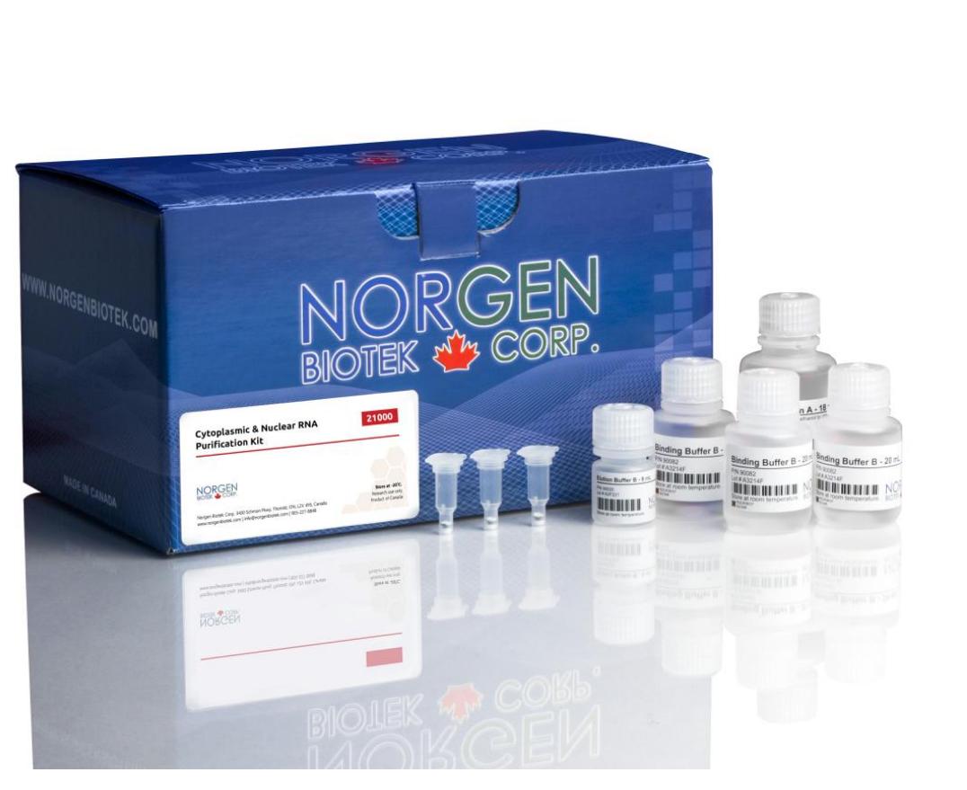 细胞质和核RNA纯化试剂盒