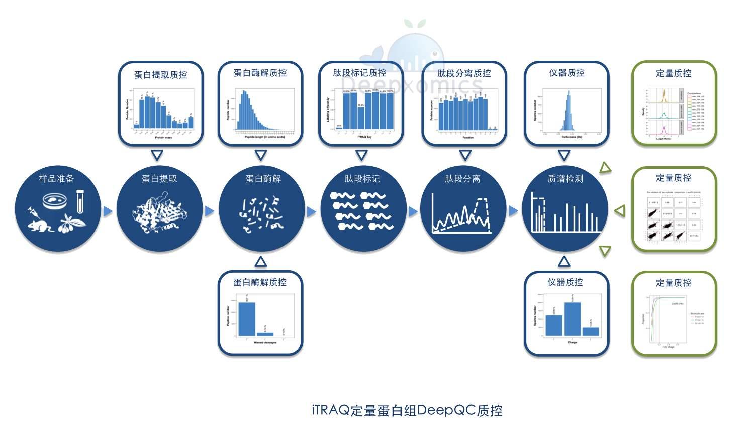 iTRAQ标记定量蛋白质组学技术服务