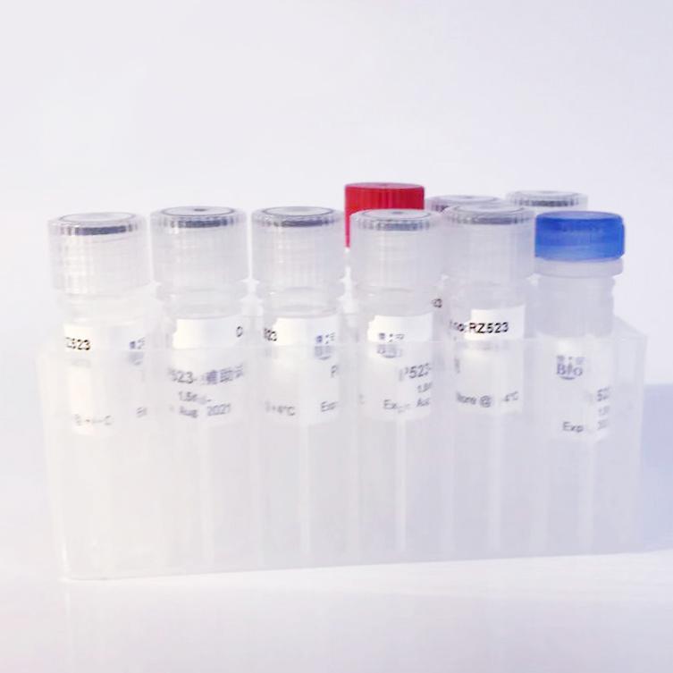 标签抗体(Anti GFP-Tag Mouse mAb)