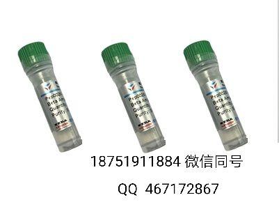 MOG(35-55)/髓鞘少突胶质细胞糖蛋白/刘经理18751911884微信同号