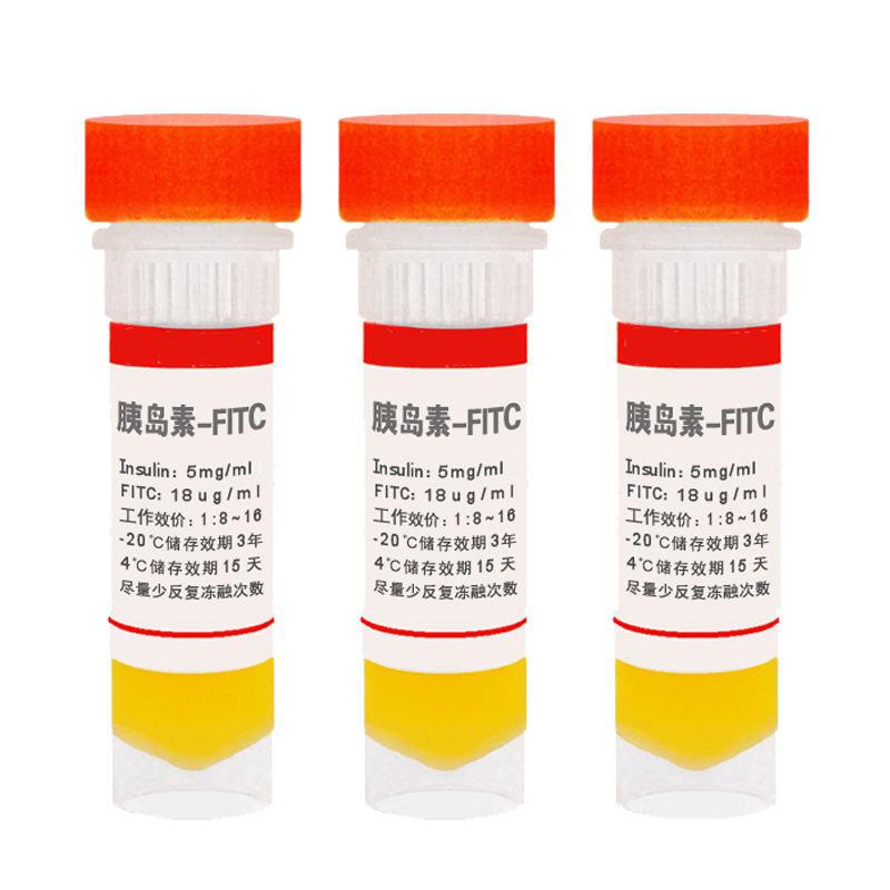 荧光素标记胰岛素,胰岛素-FITC