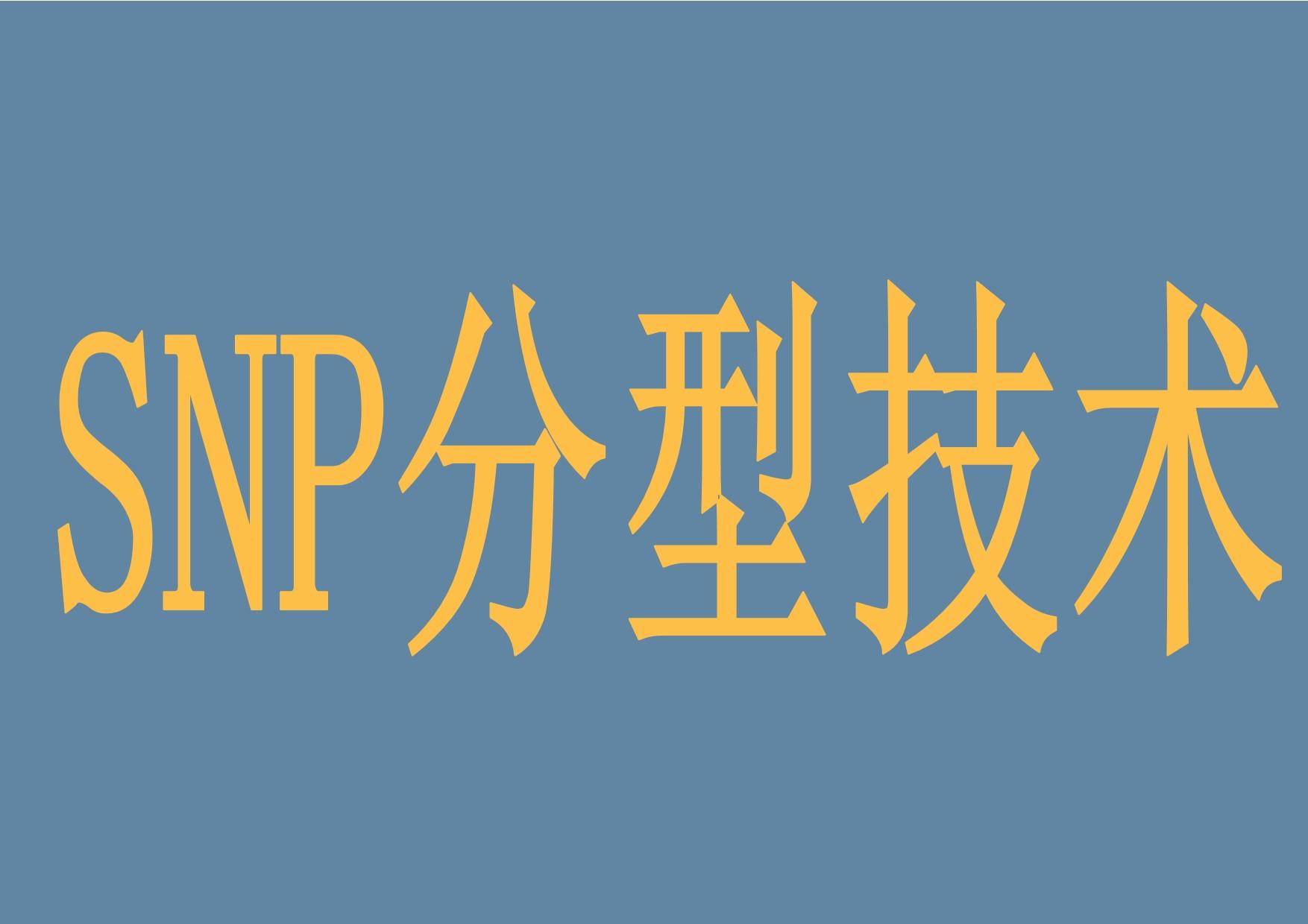 SNP分型技术