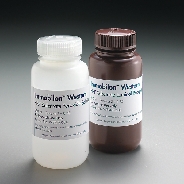 Immobilon Western Chemiluminescent HRP Substrate, 500mL