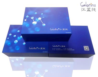免費代測大鼠趨化因子2試劑盒