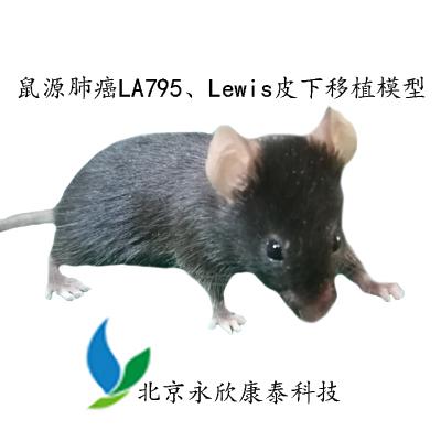 鼠源肺癌LA795、Lewis(LLC)皮下移植模型