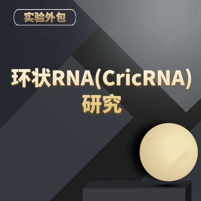环状RNA(CircRNA)研究