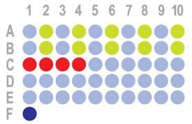 (三阴性为主)[乳腺癌,50点]HBreD050Bc01  添加IHC、PDL1、CD8和HER2数据