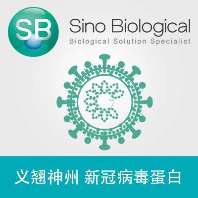 新型冠状病毒 SARS-COV-2 S蛋白(S1+S2 ECD, His tag)