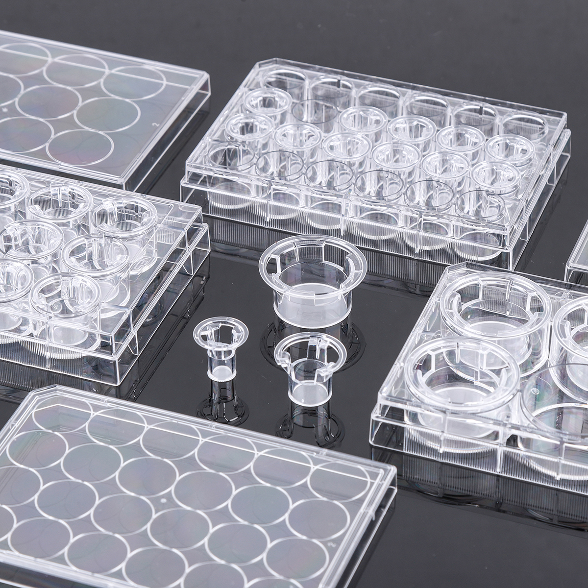 NEST 细胞小室,PET膜,PC膜