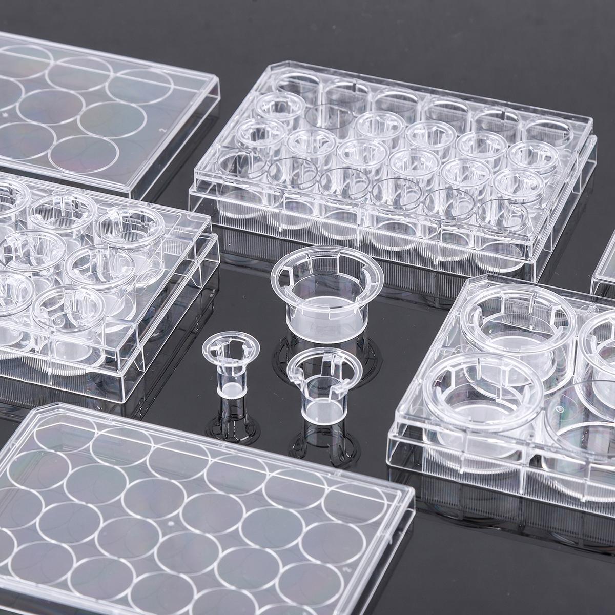 细胞小室,PC膜,TC处理
