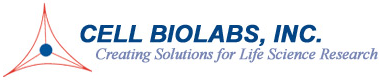 QuickTiter™ Adenovirus Titer ELISA Kit----腺病毒滴度ELISA试剂盒