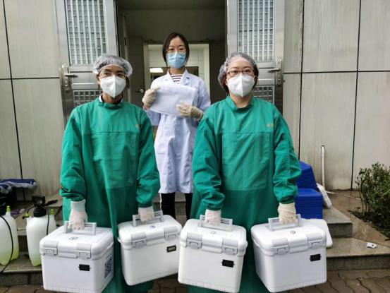 深圳市中医肛肠医院战疫日记   防护服下最美的「天使」