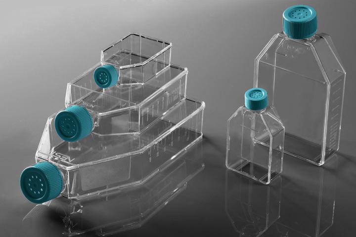NEST T175细胞培养瓶 密封盖 TC 709001
