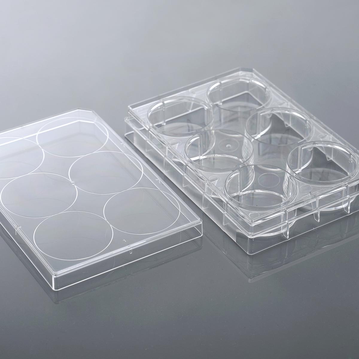 NEST 96孔细胞培养板 TC 701002