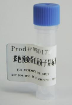彩色预染蛋白Marker(10-250KD)
