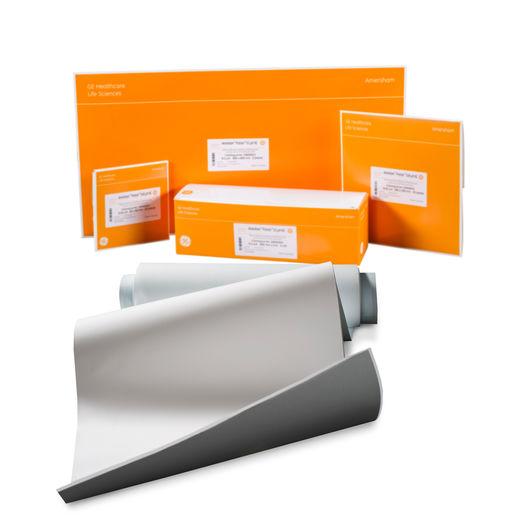 GB系列 印迹滤纸 GB005 150x150MM 25/PK