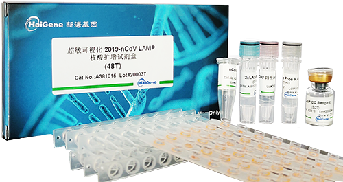 超敏荧光法2019-nCoV LAMP TaqMan核酸检测试剂盒