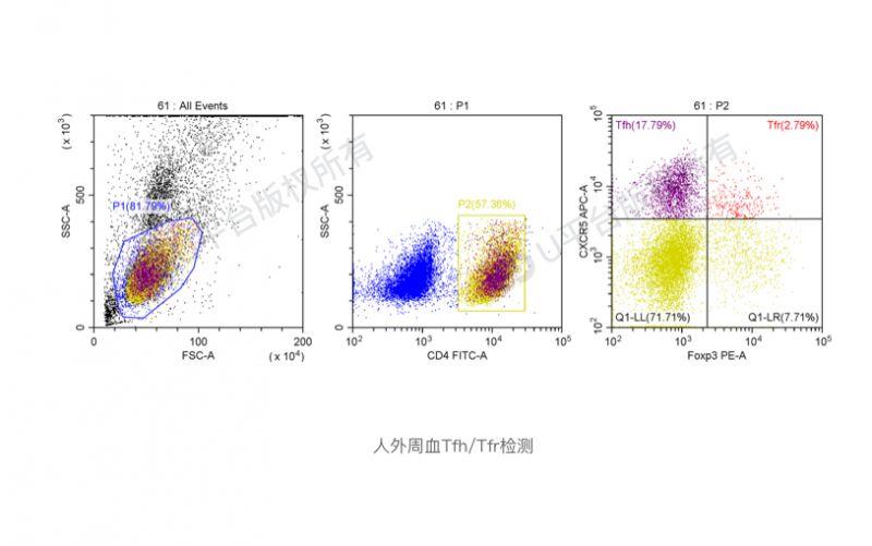 人外周血Treg/Tfh/Tfr/iTR-35检测