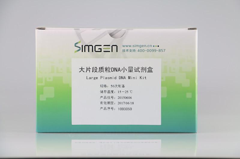 大片段质粒DNA小量试剂盒