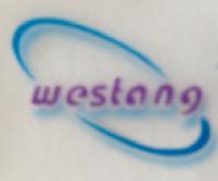 免疫印迹(western blot)检测服务