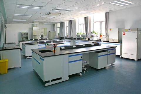 蛋白质芯片实验