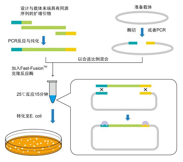 沙门氏菌核酸检测试剂盒(带内参,PCR-荧光探针法)特价
