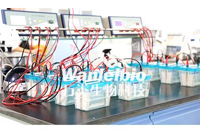免疫学技术服务
