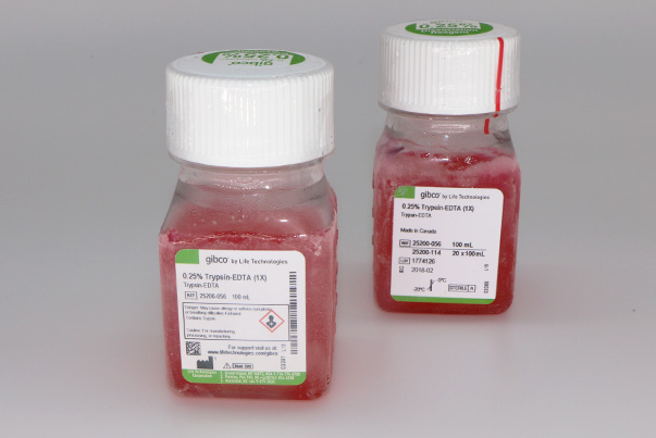 EDTA-胰酶溶液