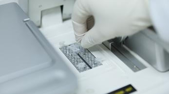 支原体检测/支原体PCR检测