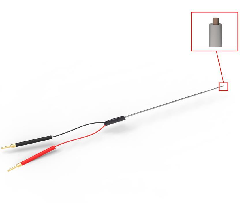 同心刺激电极双极刺激离体脑片LTP诱发电位胞外微电生理铂铱合金