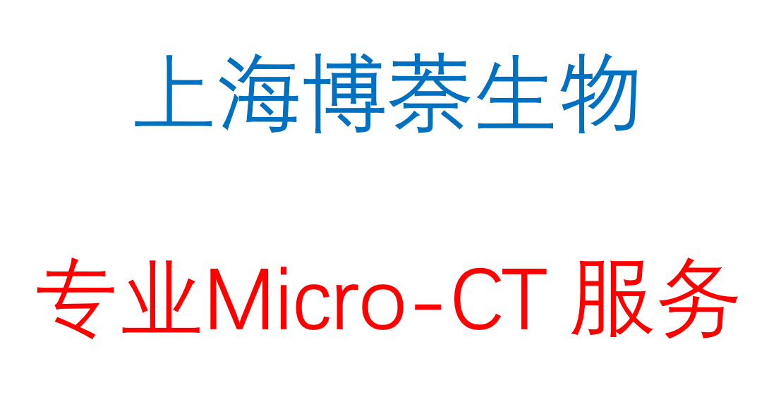 Micro CT 扫描检测分析服务 (骨、血管、脂肪、牙齿和肺部成像等)