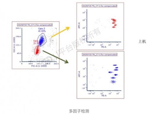 多因子检测/可溶性蛋白质分子检测