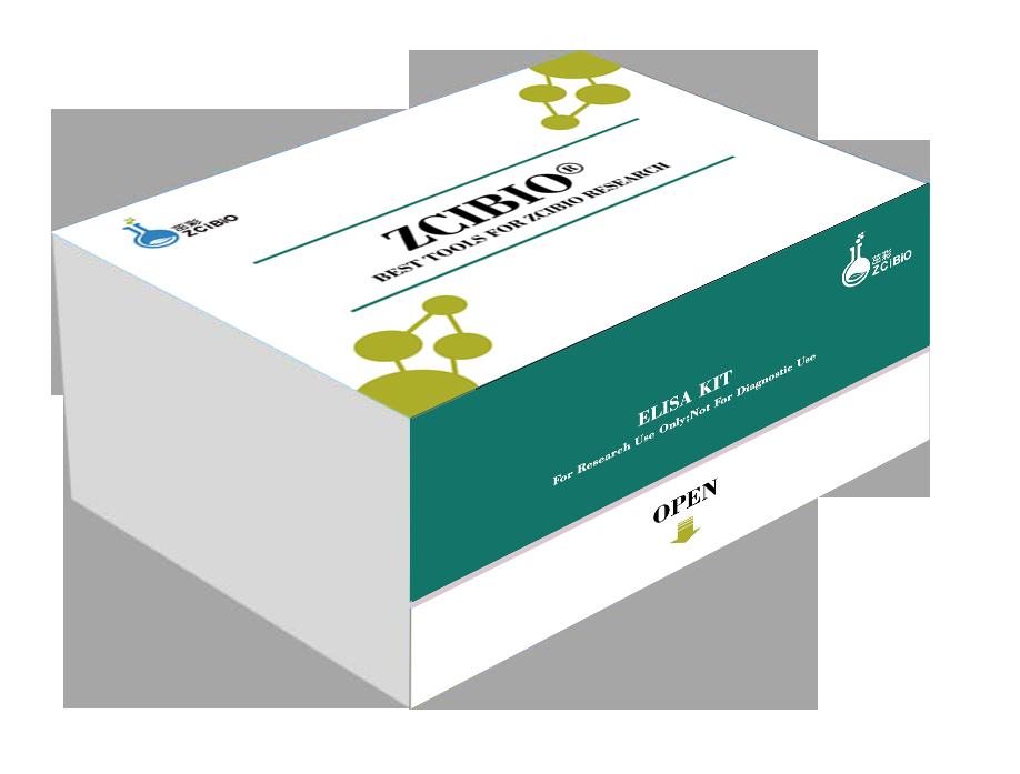 人基质金属蛋白酶抑制因子1(TIMP-1)ELISA试剂盒