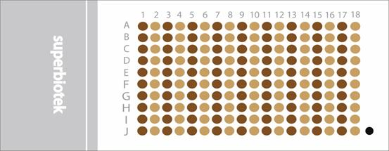 胃癌带生存期组织芯片(STC1801)