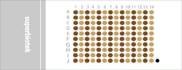 胰腺癌带生存期组织芯片(PAC1401)
