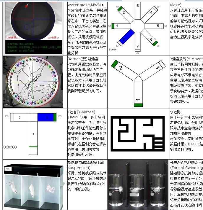 动物行为学视频分析系统