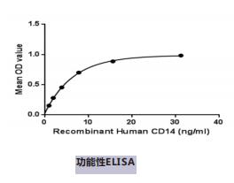 蛋白活性检测
