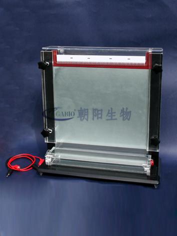 单板测序电泳仪RDY-CX2L