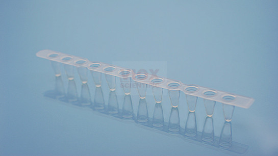荧光定量PCR耗材PCR十二联管