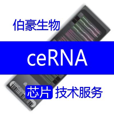 ceRNA 芯片