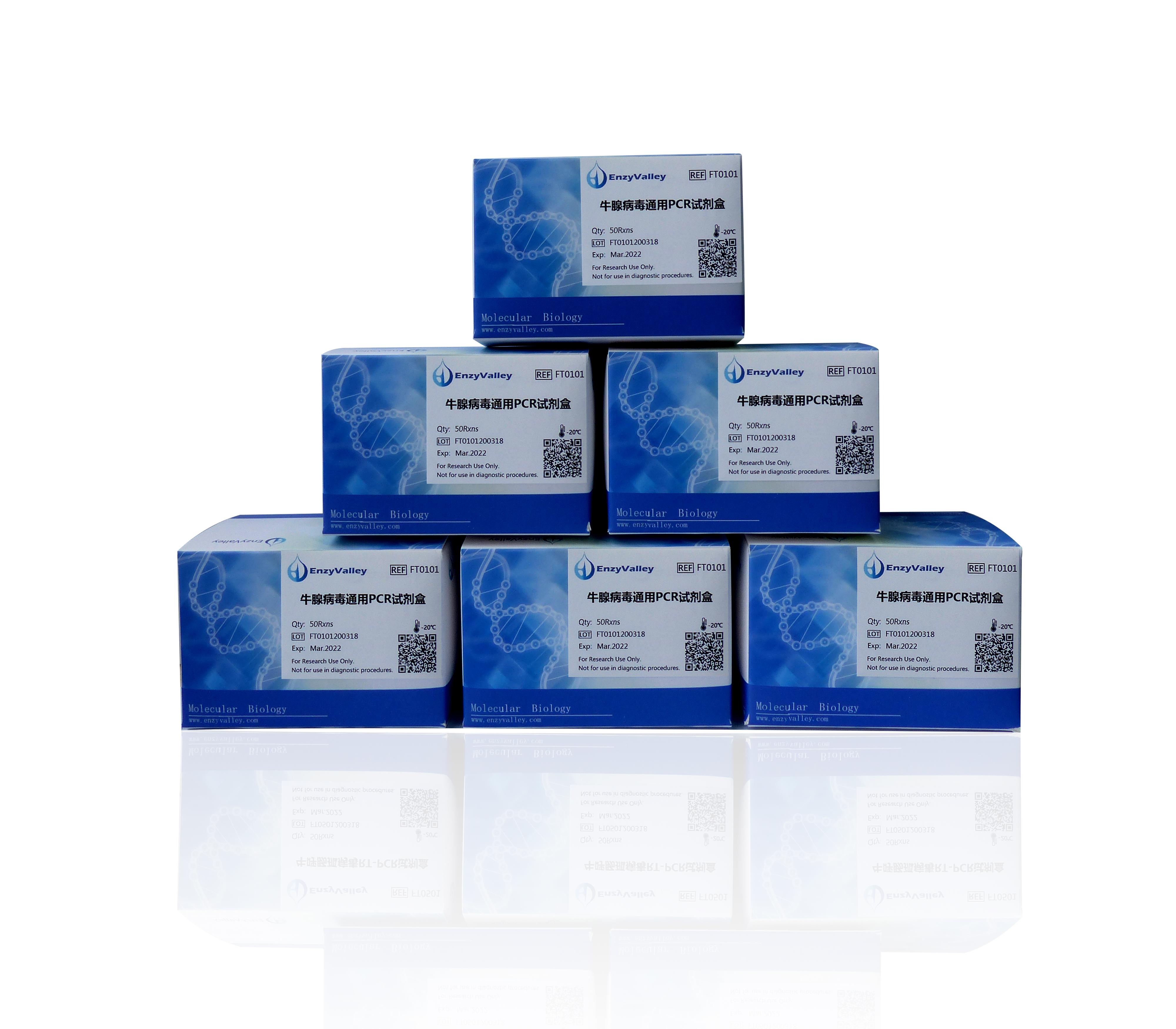 牛腺病毒通用PCR试剂盒