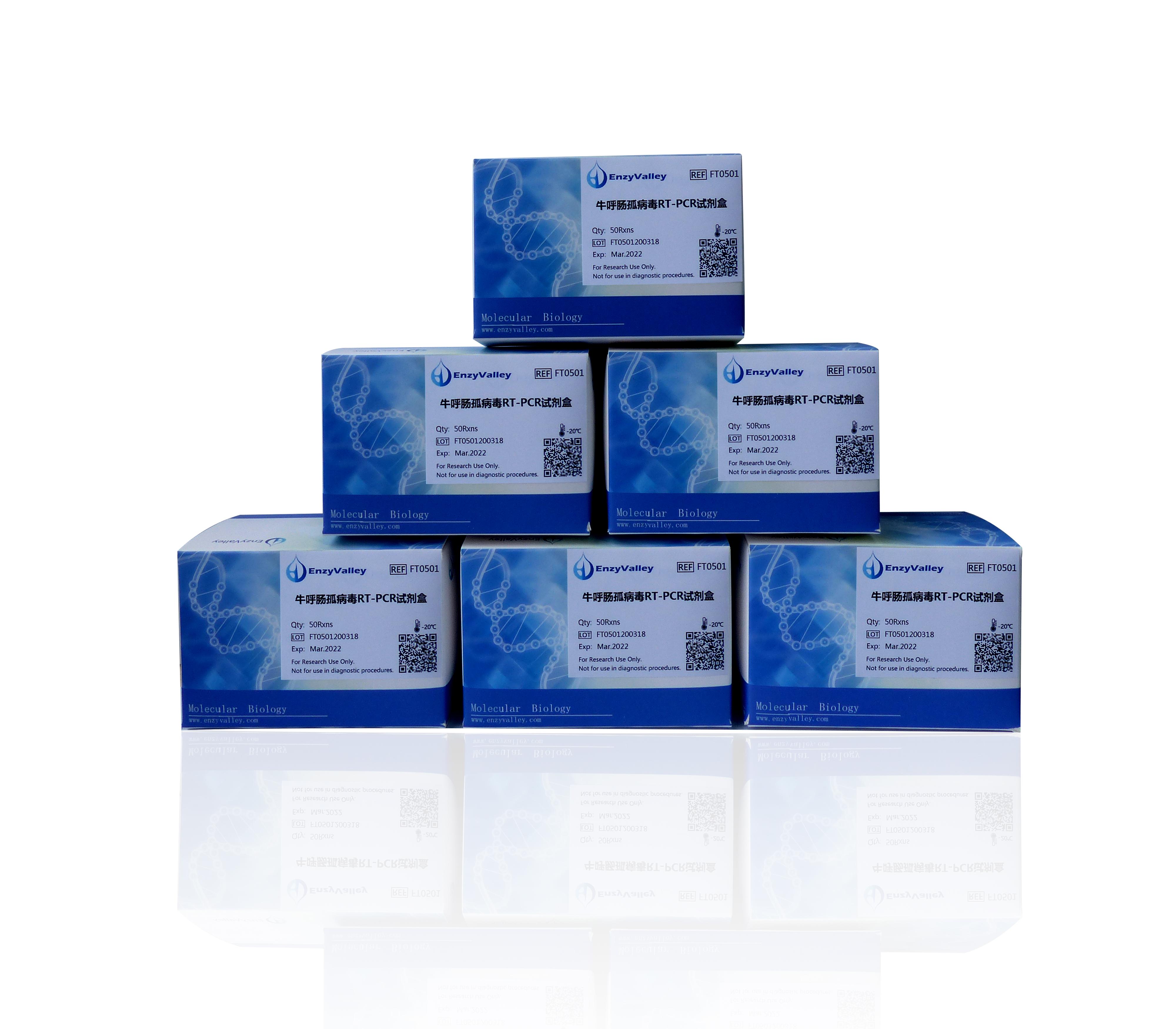牛呼肠孤病毒RT-PCR试剂盒