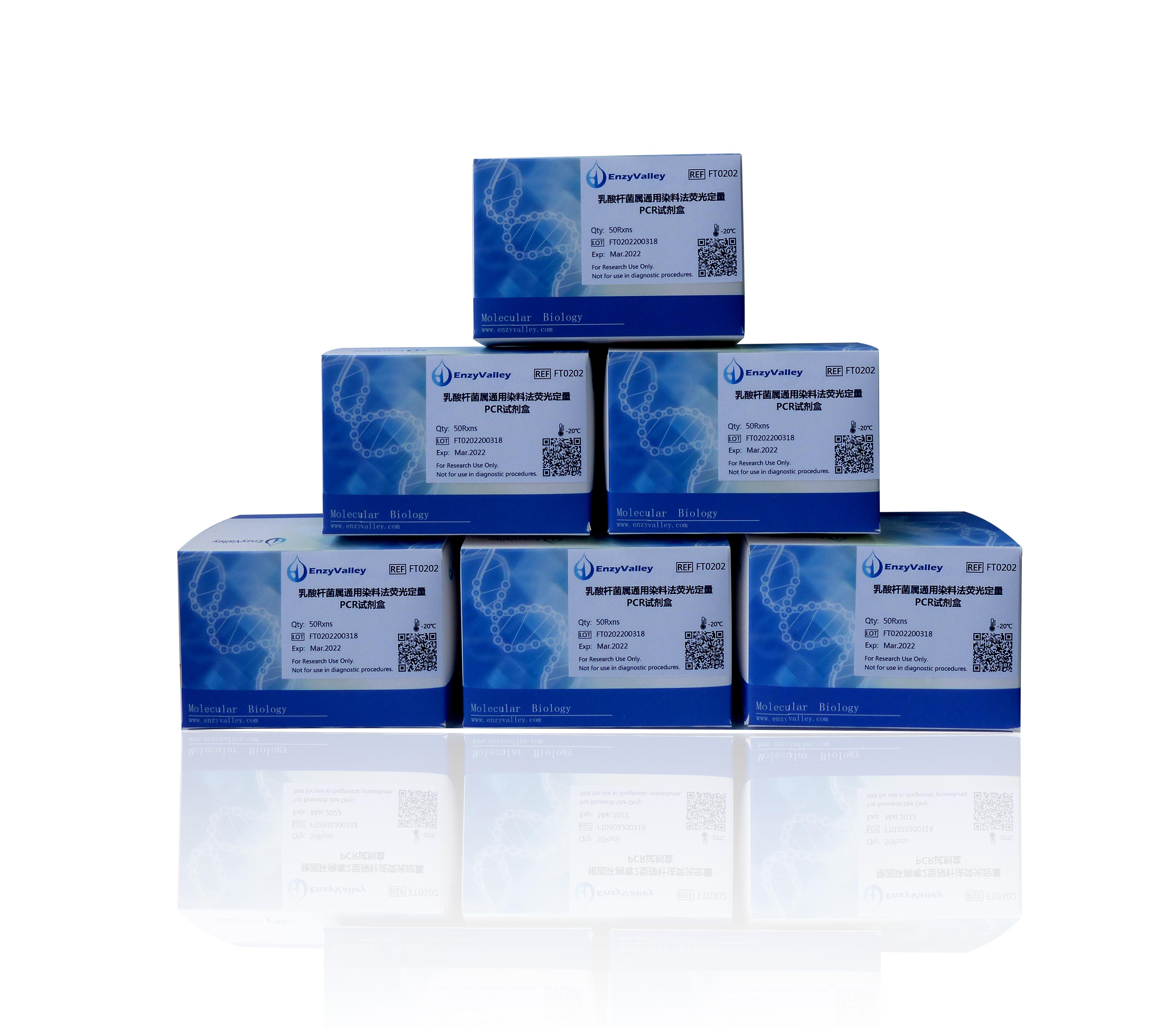 乳酸杆菌属通用染料法荧光定量PCR试剂盒