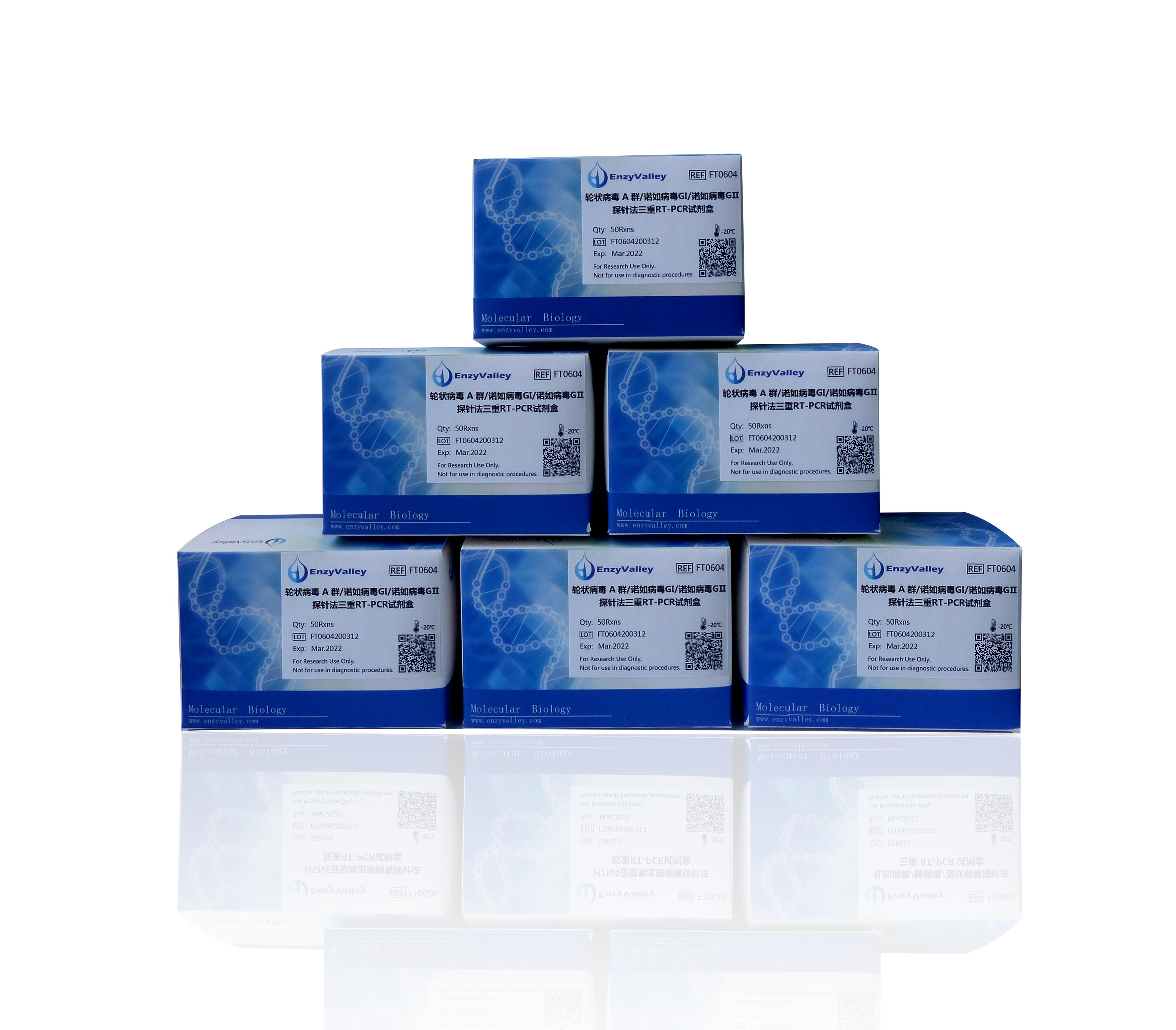 轮状病毒A群/诺如病毒GⅠ/诺如病毒GⅡ探针法三重RT-PCR试剂盒