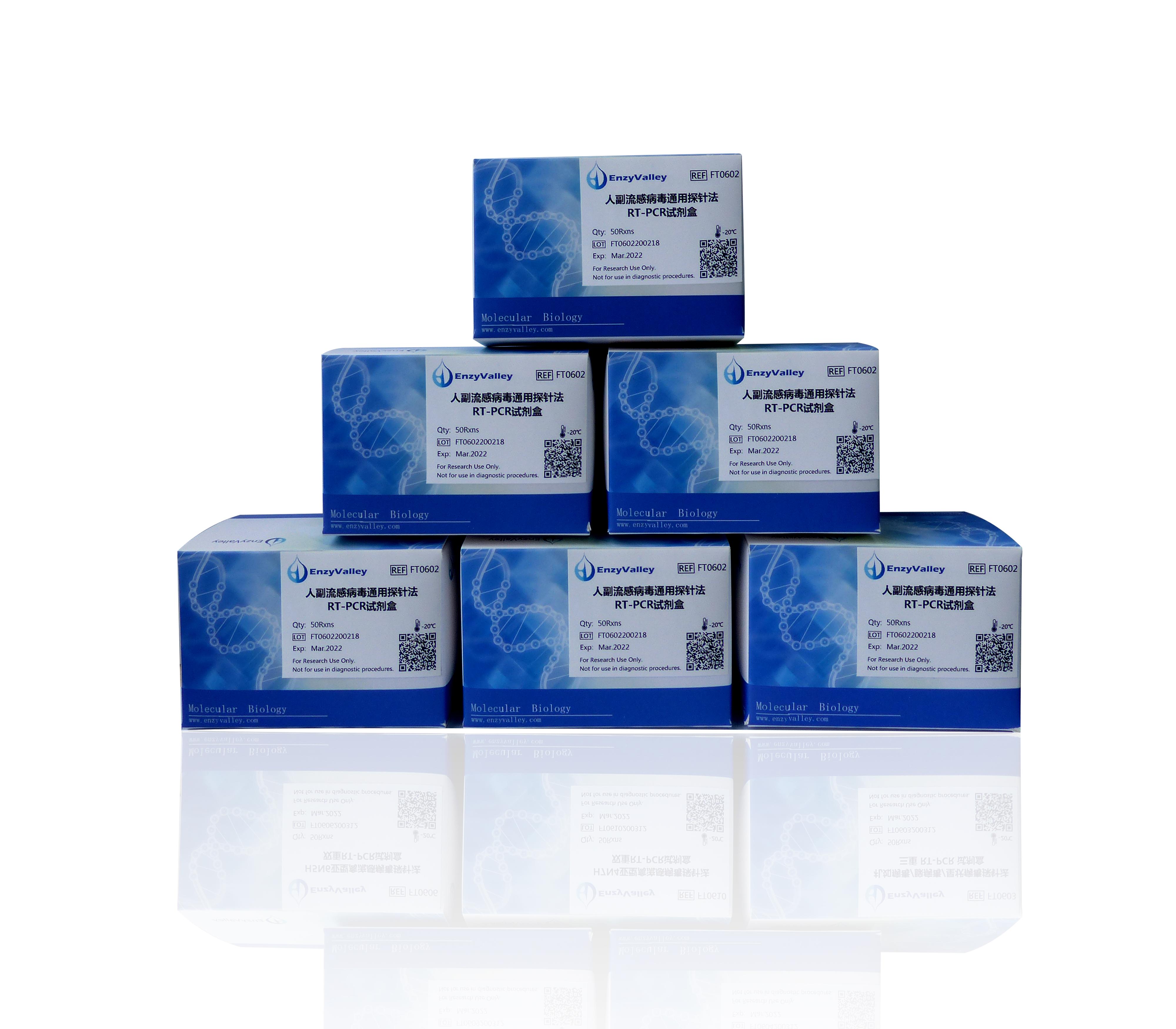 人副流感病毒通用探针法RT-PCR试剂盒