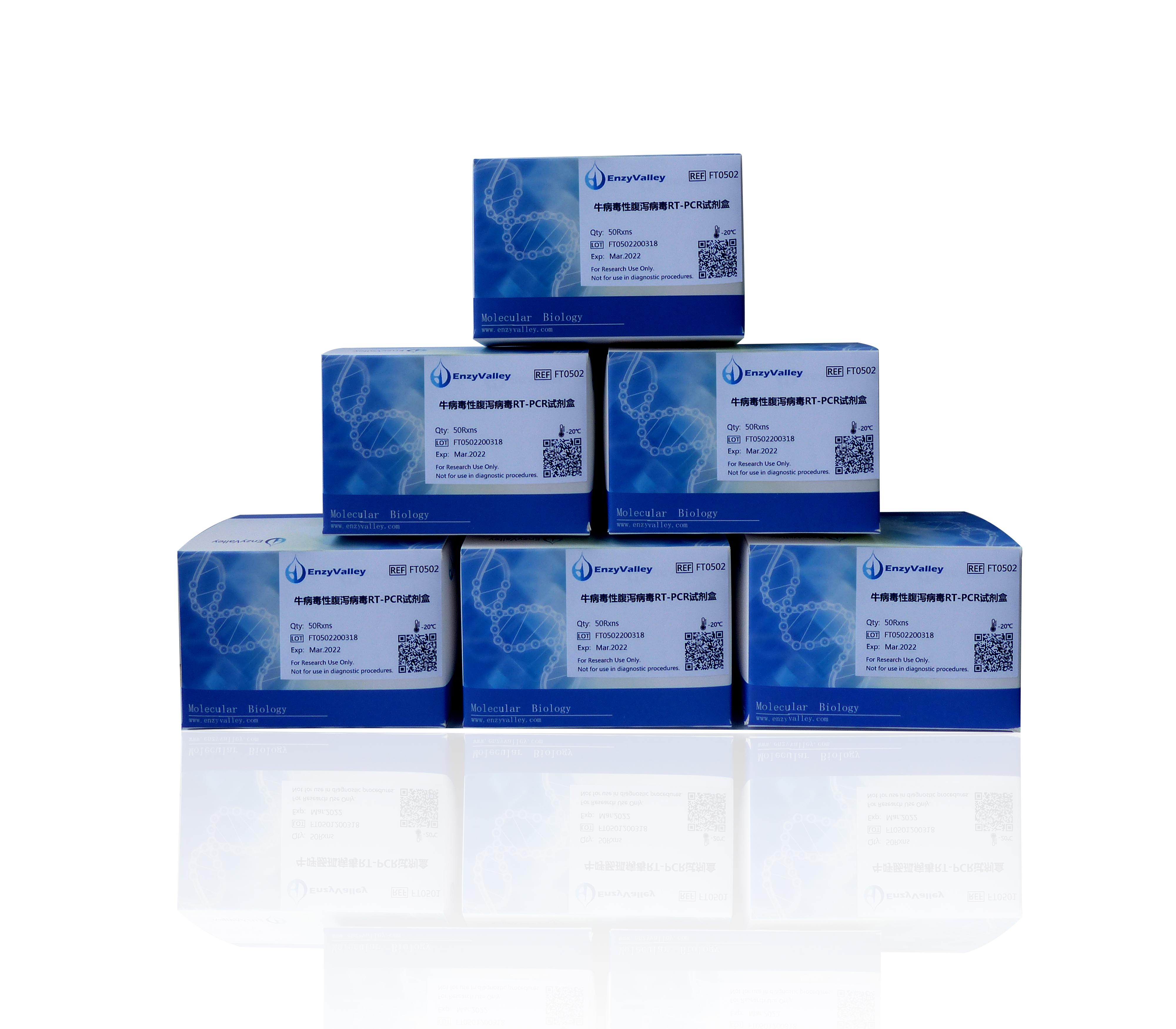 牛病毒性腹泻病毒RT-PCR试剂盒