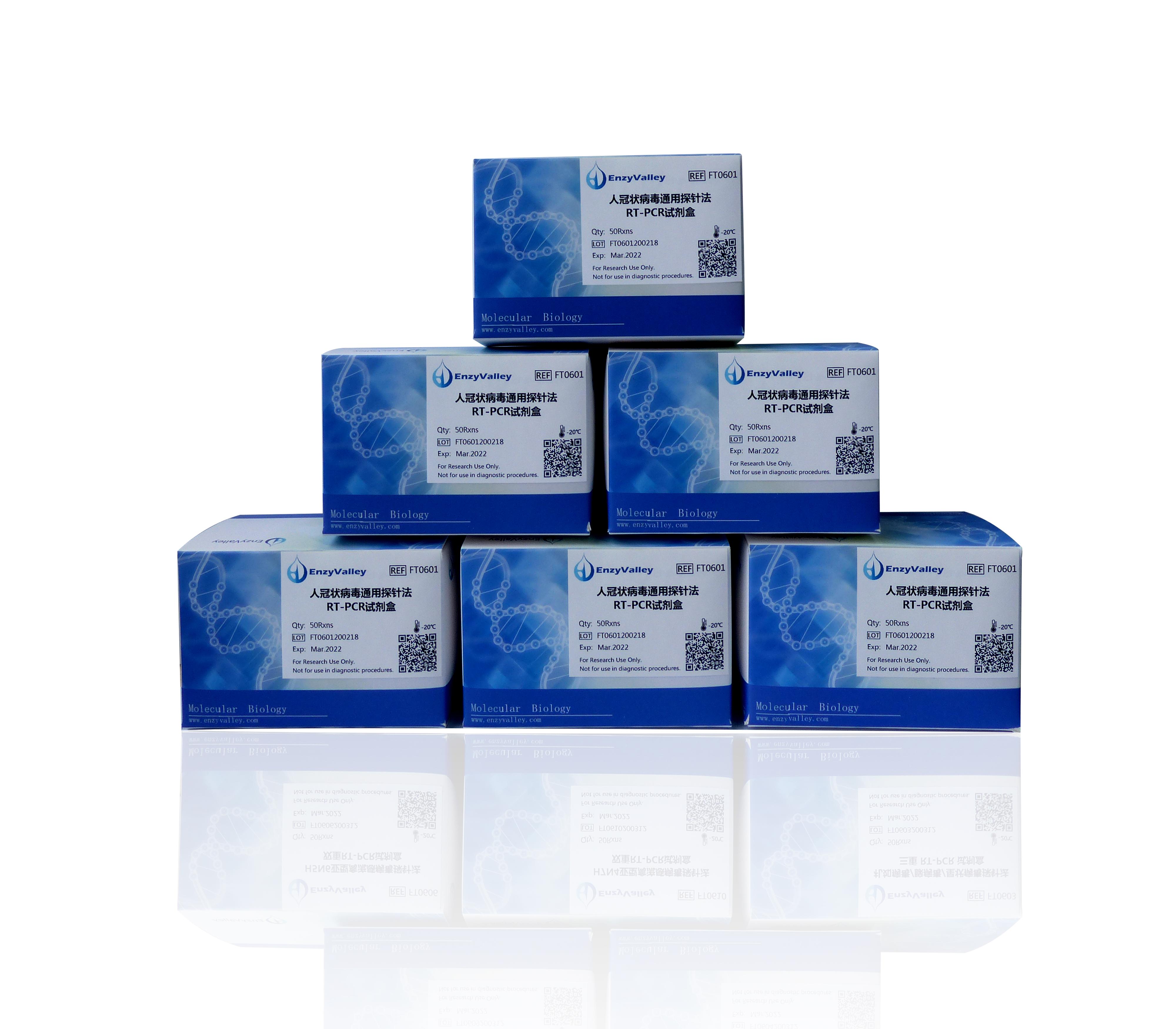 人冠状病毒通用探针法RT-PCR试剂盒