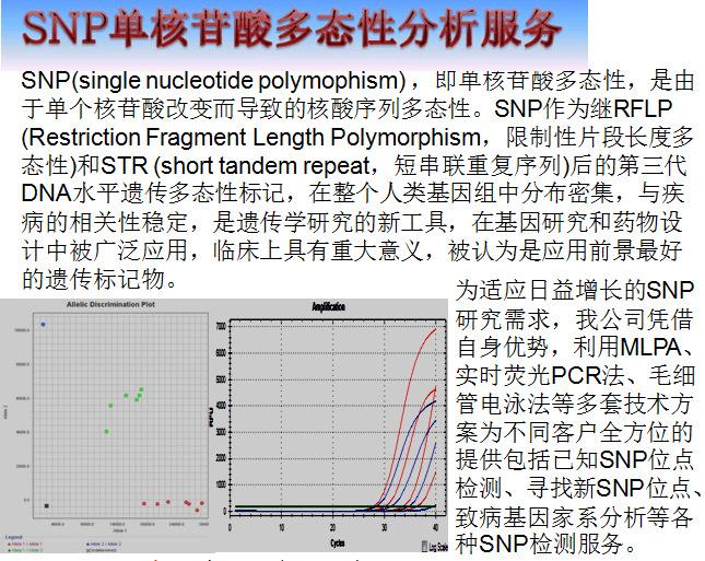 提供SNP分析鉴定服务 SNP单核苷酸多态性分析服务